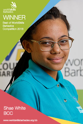 Best of the WorldSkills Barbados Competition 2018 Award